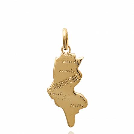 Gold plated Tunisie  countries pendant