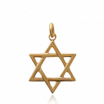 Woman gold plated Etoile de david pendant